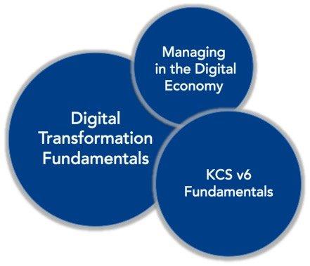 Online Curriculum Path